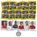 Images Panini Foot 2011